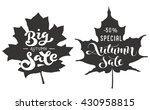 autumn big sale   handwritten... | Shutterstock .eps vector #430958815