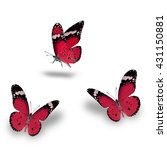 butterfly set  beautiful red... | Shutterstock . vector #431150881