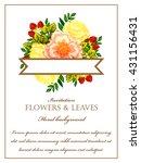 vintage delicate invitation... | Shutterstock .eps vector #431156431