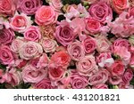 Lathyrus And Roses In A Pink...