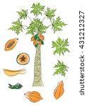 Papaya Tree  Fruit And Leaves...