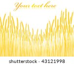 illustration of the field of... | Shutterstock .eps vector #43121998