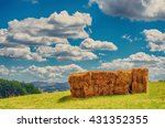 a stack of hay bales in a rural ... | Shutterstock . vector #431352355