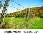 Barbed Wire Fence With Autumn...