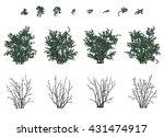 set of bushes | Shutterstock .eps vector #431474917