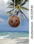 An Island sick coconut. - stock photo
