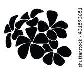 frangipani silhouettes for...   Shutterstock .eps vector #431593651