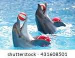 dolphins with a ball | Shutterstock . vector #431608501