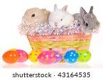 3 Easter Bunnies In Basket On...