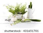 fresh cut garden herbs ... | Shutterstock . vector #431651701