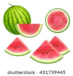 set of fresh watermelon ... | Shutterstock . vector #431739445