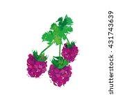 vector illustration of raspberry   Shutterstock .eps vector #431743639