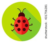 ladybug insect circle icon.... | Shutterstock .eps vector #431756281