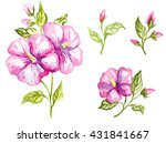 watercolor illustration of a... | Shutterstock . vector #431841667