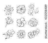 set of  hand drawn line flowers.... | Shutterstock .eps vector #432058489