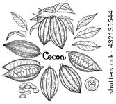 graphic cocoa fruit collection... | Shutterstock .eps vector #432135544