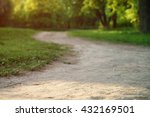 Path In Park In Summer Evening...