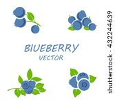 vector flat blueberry icons set ... | Shutterstock .eps vector #432244639