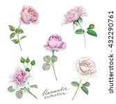 Watercolor Set Of Delicate Roses