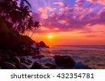 Palm Tress On Tropical Coast A...