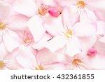 background of pink oleander... | Shutterstock . vector #432361855