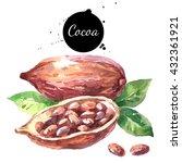 watercolor hand drawn cocoa pod.... | Shutterstock . vector #432361921