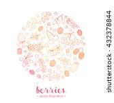 hand drawn outline berries in... | Shutterstock .eps vector #432378844