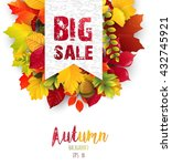 autumn leaves with sales banner | Shutterstock . vector #432745921