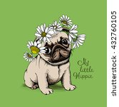 puppy pug in a chamomile crown... | Shutterstock .eps vector #432760105