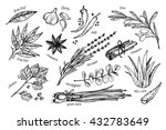hand drawn vintage illustration ... | Shutterstock .eps vector #432783649