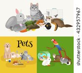 home pets set  cat dog parrot... | Shutterstock .eps vector #432957967