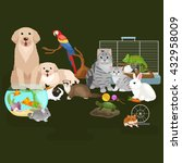 Stock vector home pets set cat dog parrot goldfish hamster domesticated animals 432958009