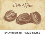 roasted coffee beans engraved... | Shutterstock .eps vector #432958261