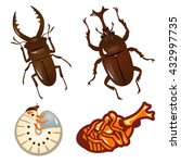 Set Of Beetles And Stag Beetles