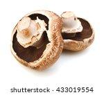 Portabello Mushroom Isolated...