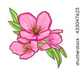 floral background with cherry...   Shutterstock .eps vector #433047625