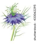 nigella flower | Shutterstock .eps vector #433062295