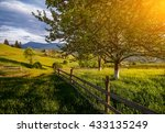 Beautiful Rural Landscape With...