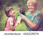 happy grandmother with her...   Shutterstock . vector #433229074