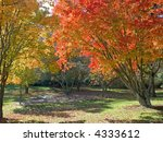 Brilliant Autumn colors at the peak of the season in Holmdel State Park in New Jersey. - stock photo