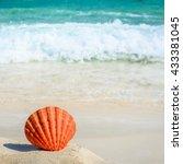 orange seashell on sandy... | Shutterstock . vector #433381045