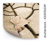 Isolated Dry Leaf On Dry Groun...