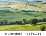 trees and green groves in... | Shutterstock . vector #433541761