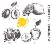 series   vector fruit and...   Shutterstock .eps vector #433568575