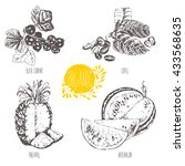 series   vector fruit and... | Shutterstock .eps vector #433568635
