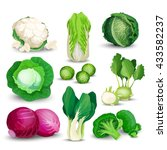 vegetable set with cabbage ... | Shutterstock .eps vector #433582237