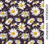 Watercolor Floral Pattern Daisy ...