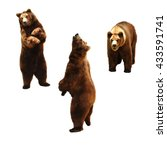 set of brown bears. isolated on ... | Shutterstock . vector #433591741