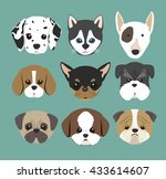purebred dogs design  | Shutterstock .eps vector #433614607