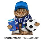 funny cat is wearing a cap and... | Shutterstock . vector #433636009